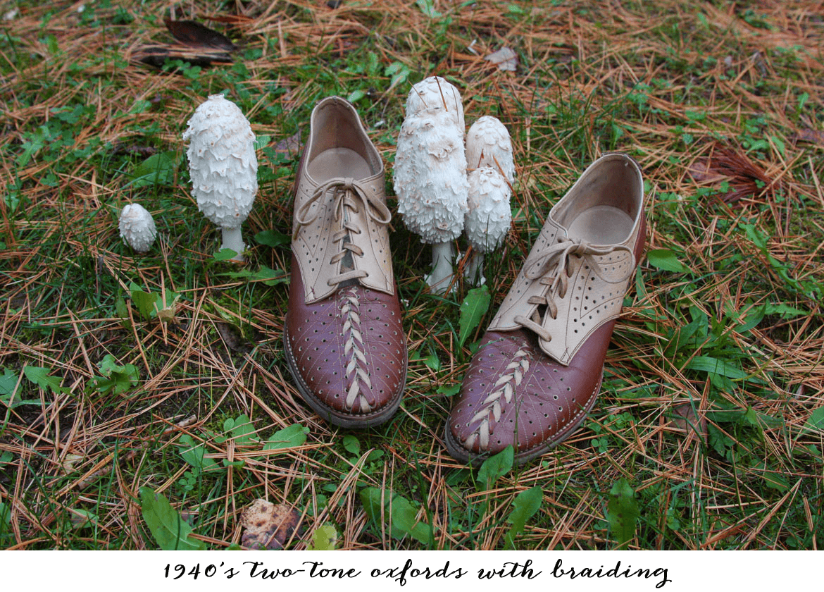vintage-shoes-mushrooms-autumn-title